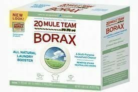 how to clean carpet stains with borax