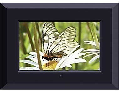 staples sungale 7 inch digital picture frame 20 free store pick upreg 50