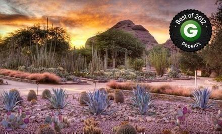 Desert Botanical Garden 50 Off Regular Admission Just 9 Ea