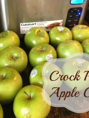 Recipe | Crock Pot Apple Crisp