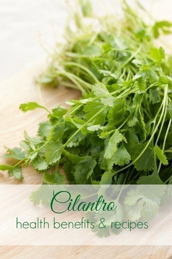 5 Great Recipes to Use up Cheap Cilantro (+ Health Benefits)