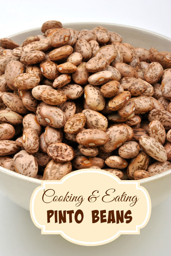 Pinto Beans as an Inexpensive, Healthy Meal Option
