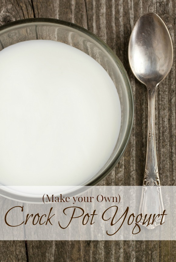 Make your Own Crock Pot Yogurt