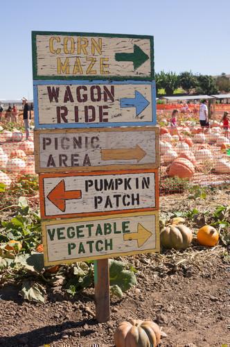 HUGE List of Fall Festivals in Phoenix & Greater Arizona