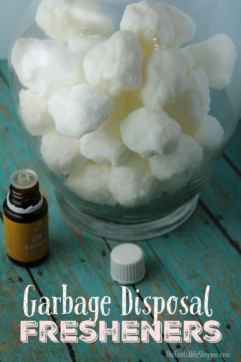 DIY Garbage Disposal Fresheners