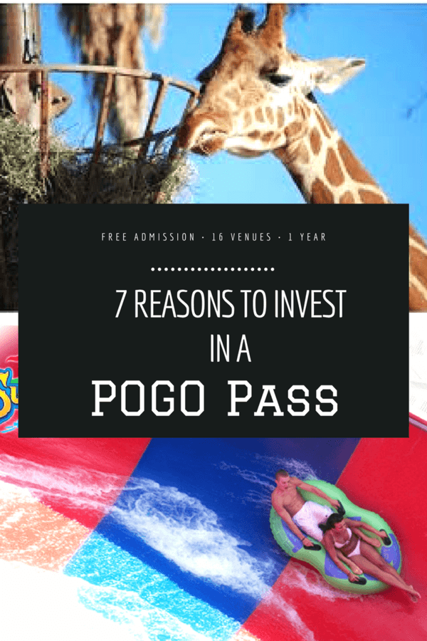 7-reasons-to-invest-in-a-pogo-pass