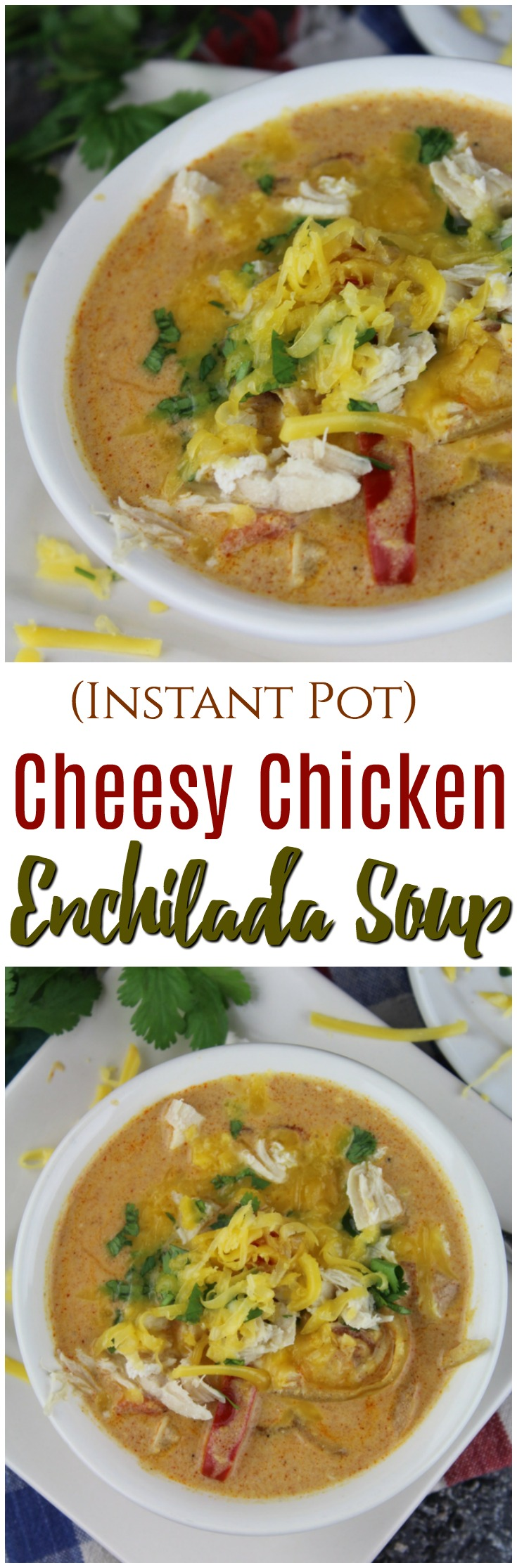 Your favorite enchilada flavors wrapped in the comfort of a deliciously yummy soup - easily made in your Instant Pot! #InstantPot #soup #chicken
