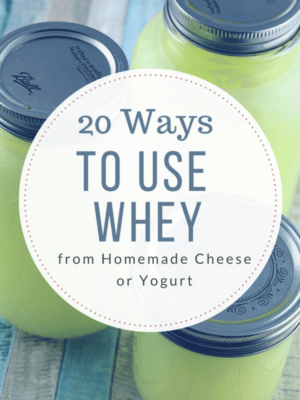 20 Ways to use Whey