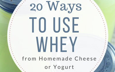 20 Ways to use Whey