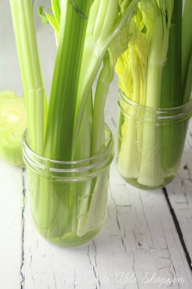 Celery not used within a few days can go limp - don't toss it!  You can easily revive it with a few simple steps.