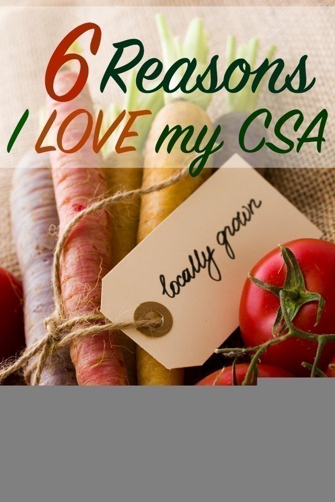 6 Reasons I LOVE My CSA