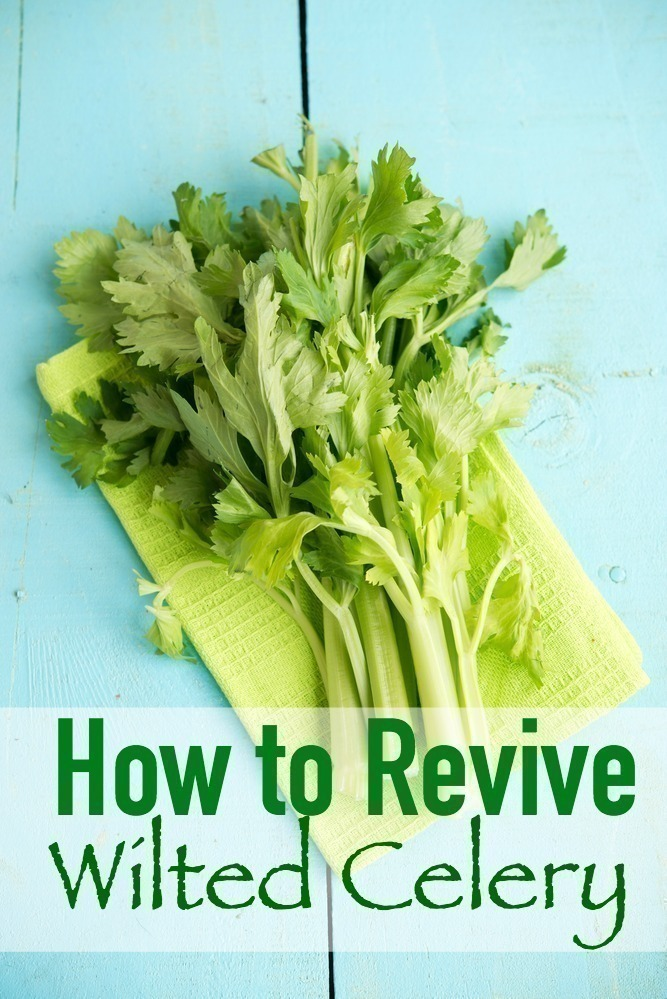 How to Revive Wilted Celery