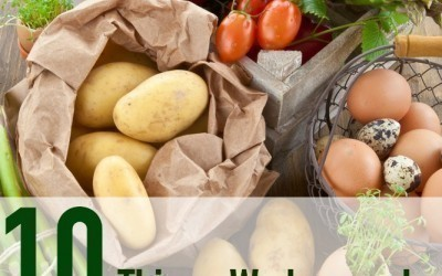 10 Things We Learned from Being in a CSA