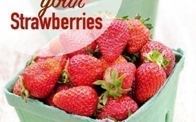 5 Ways to Preserve your Strawberries
