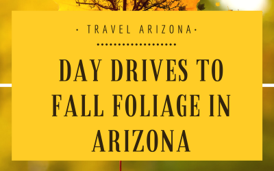 Day Drives to Fall Foliage in Arizona