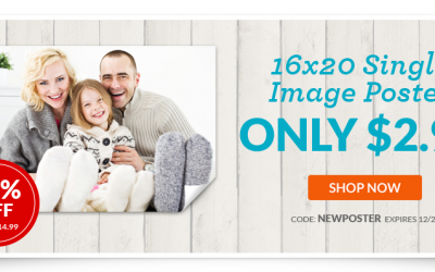 Single Image 16×20 Poster just $2.99