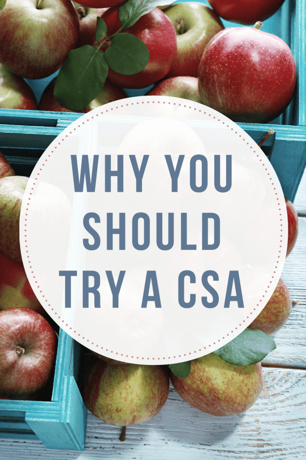 If you haven't considered investing in a CSA, there are many reasons you should consider - local, sustainably grown, organic produce is not only healthier, it's a great way to support your local farmer.
