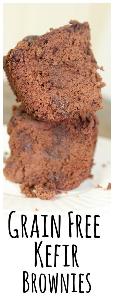 These grain-free kefir brownies are made with raw milk kefir and coconut flour - the perfect snack!
