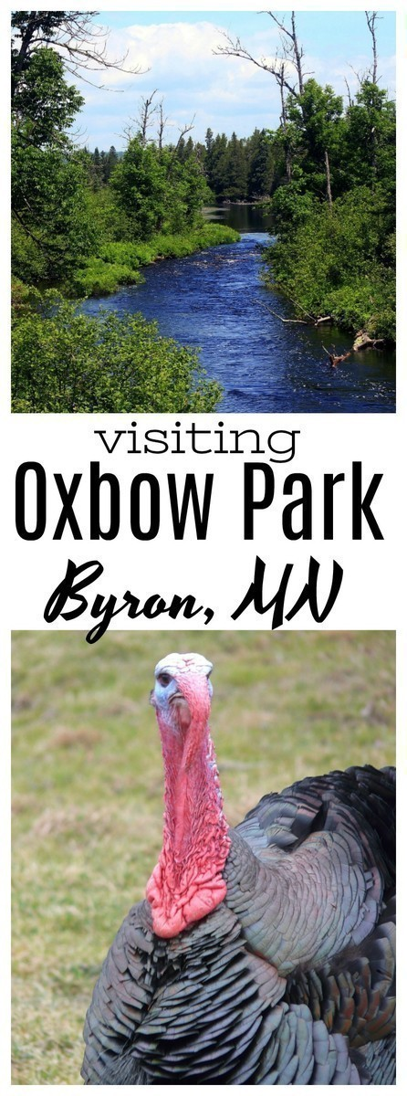 Are you going to Southeast Minnesota? You won't want to miss your chance to visit Zollman Zoo and Oxbow Park!