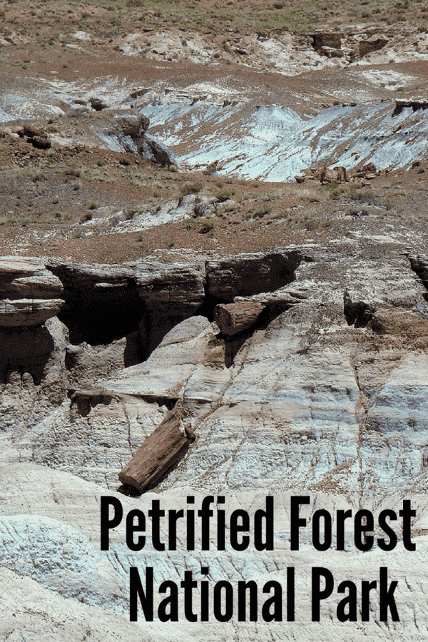 Visit the Petrified Forest National Park (Arizona)