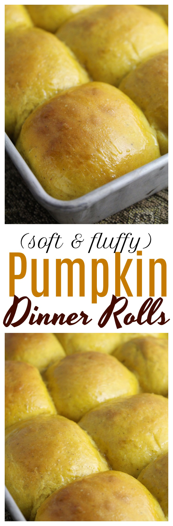 These pumpkin dinner rolls are light, fluffy, and perfect to serve along your next bowl or soup or Thanksgiving dinner with your family!