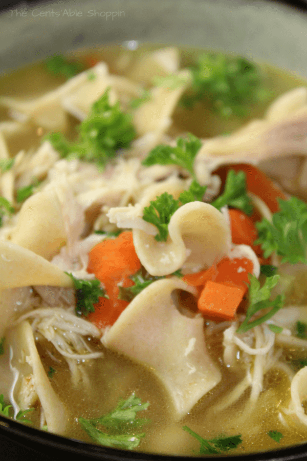 Easy Instant Pot Chicken Noodle Soup - The Cents'Able Shoppin
