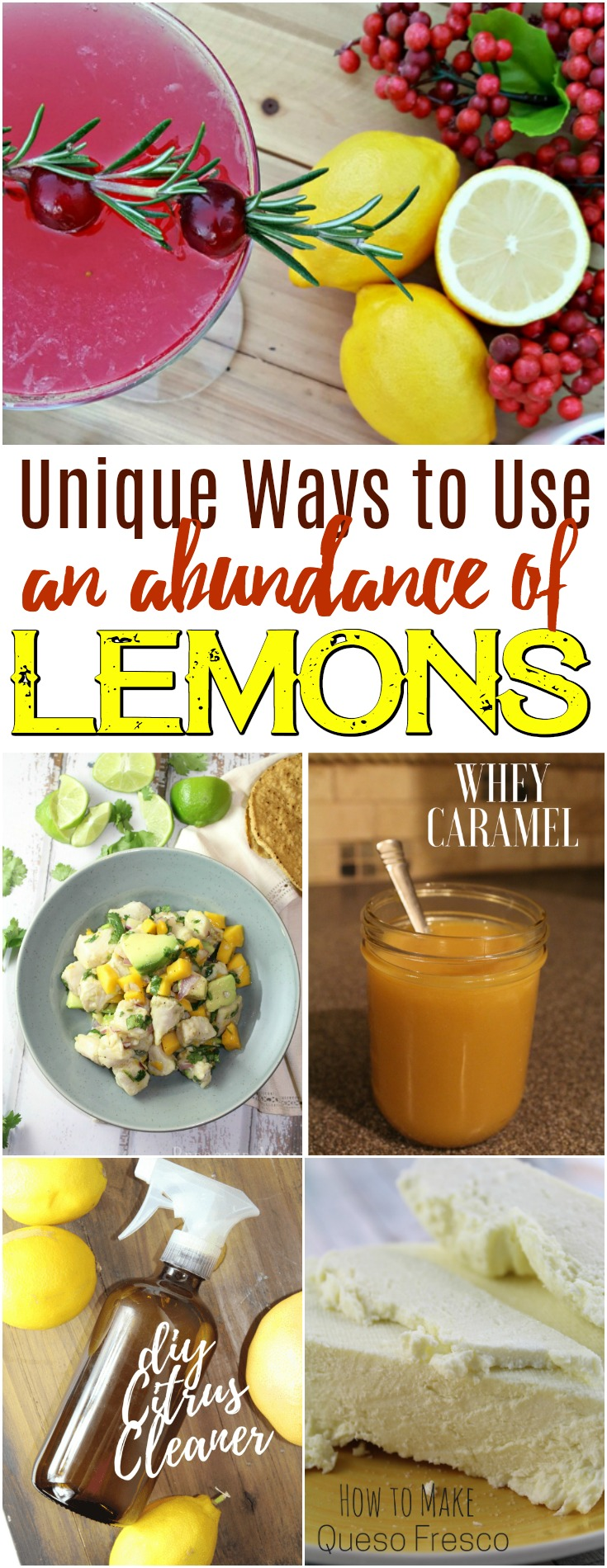 It can be such a blessing to have an abundance of lemons - there are so many fun ways to put them to use! #lemons #frugal #homesteading #lemonrecipes