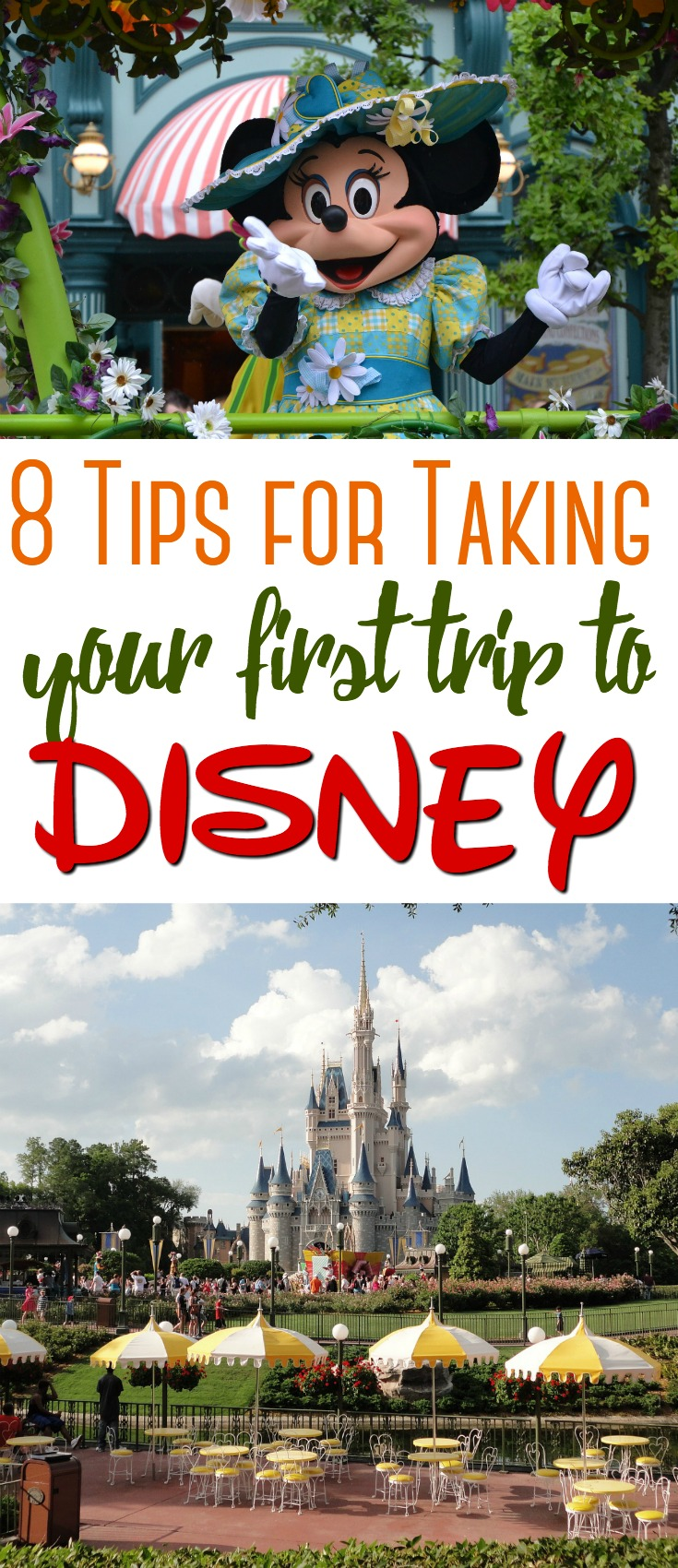Disney is a wonderful place to visit - no matter what your age! Here are 8 tips for making your first trip to Disney one that you will never forget!