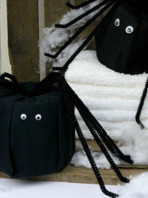 DIY Toilet Paper Spider